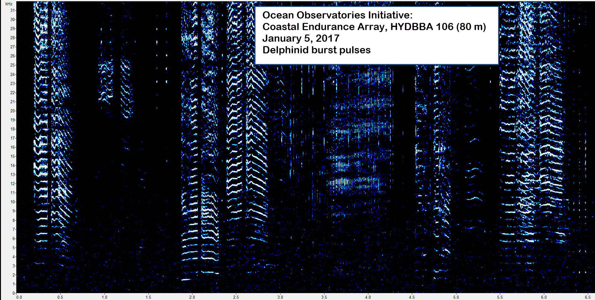 Spectrogram of an ocean dolphin (delphinid) burst pulse from the OOI Coastal Endurance Array