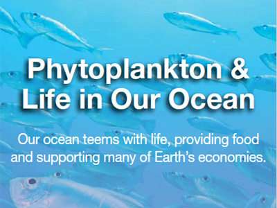 Phytoplankton & Life in Our Ocean Brochure