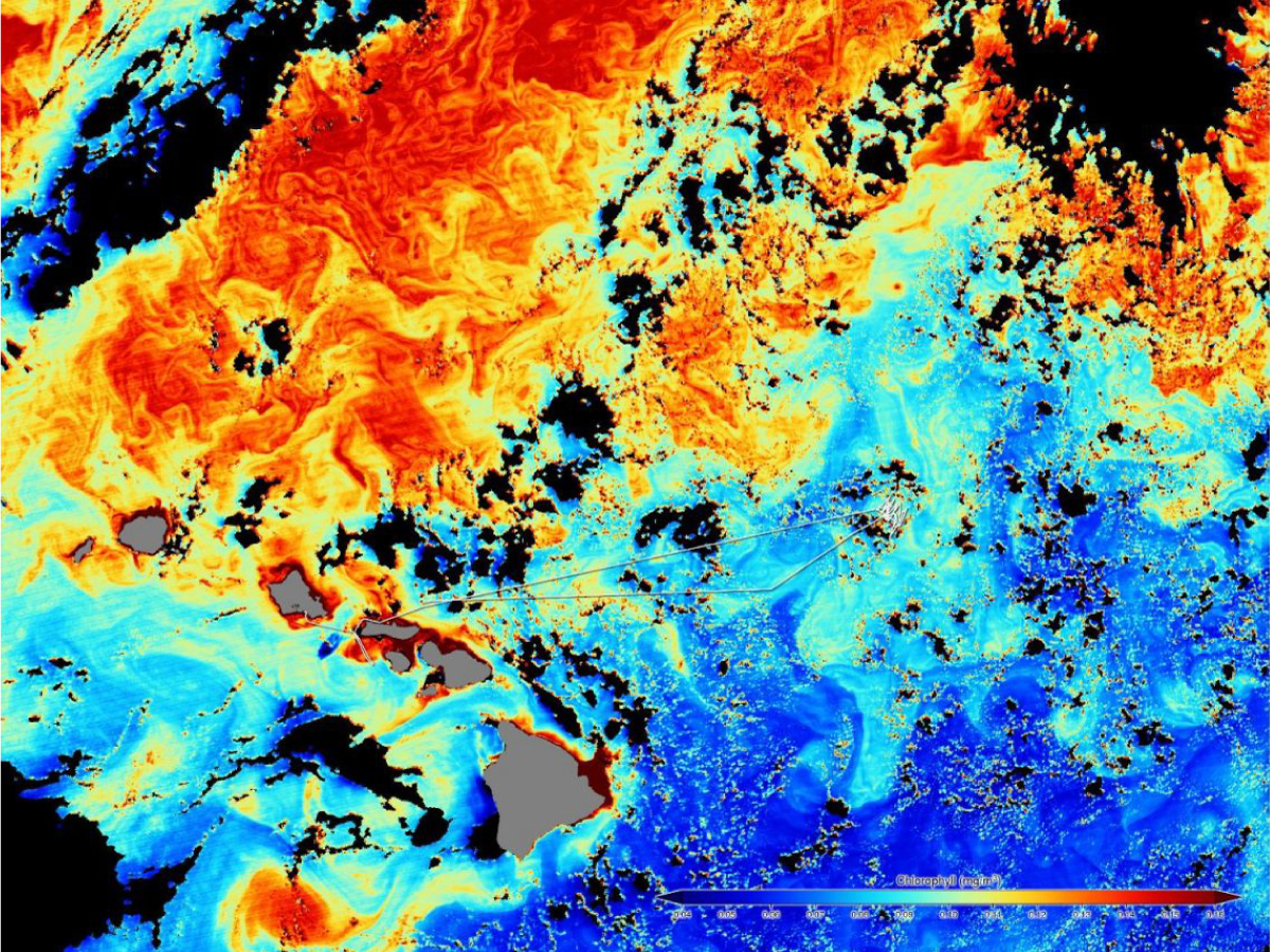 A satellite image shows the cruise track against a background of ocean color data