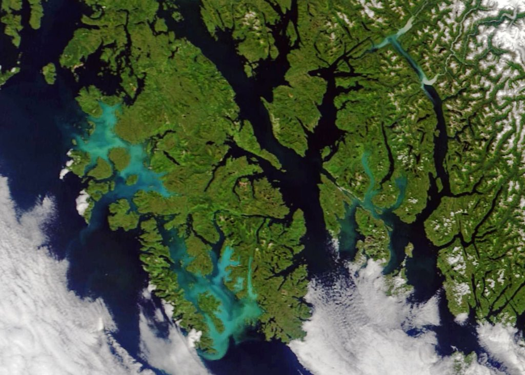 Milky blue water in this satellite view of Prince of Wales Island, AK is thought to be caused by a bloom of non-toxic phytoplankton known as coccolithophores.