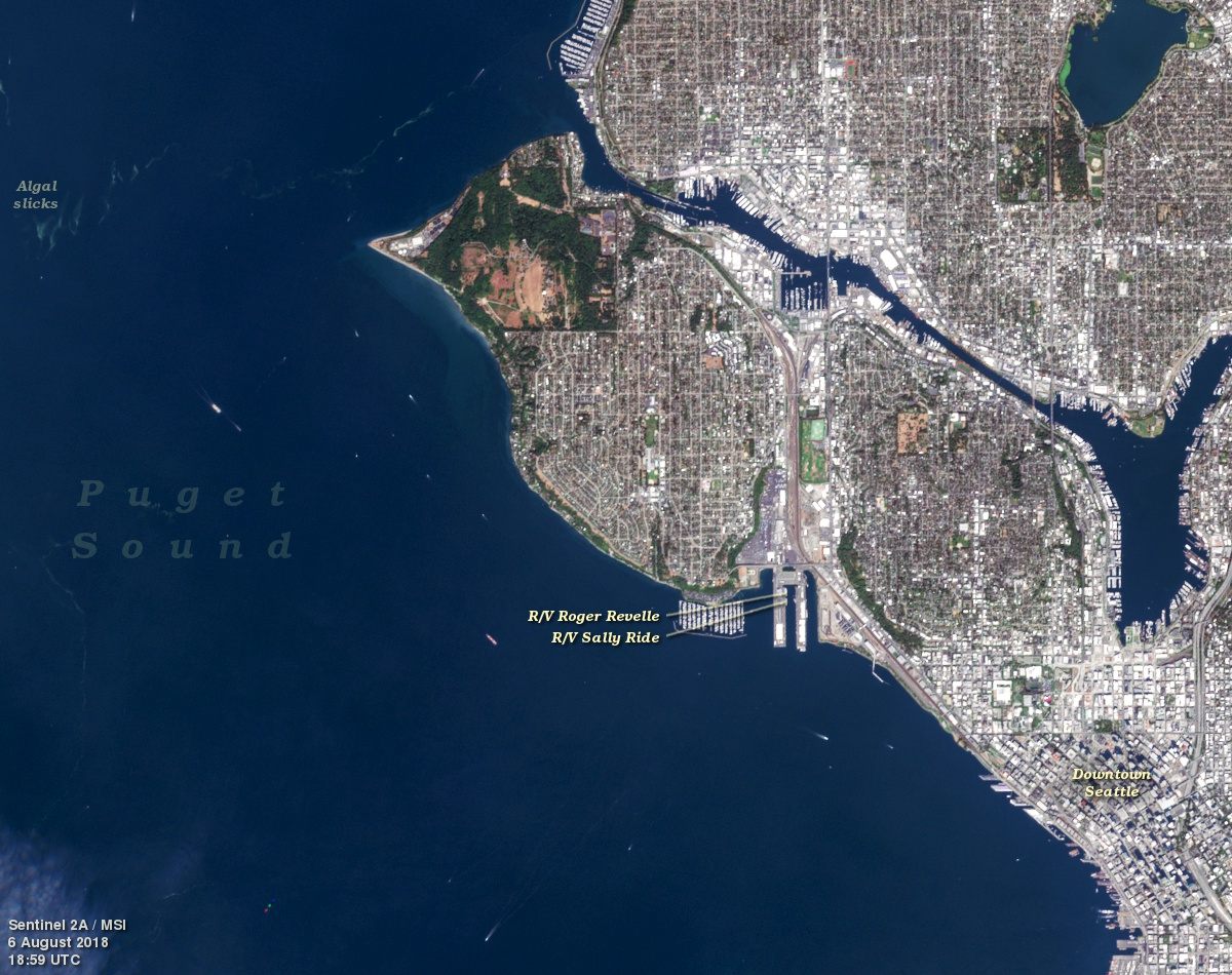 This Sentinel-2A view of Seattle, Washington includes the R/V <em>Sally Ride</em> and the R/V <em>Roger Revelle</em>. The ships were docked at Smith Cove on August 6, 2018 in preparation for the first cruise of the EXPORTS field campaign.