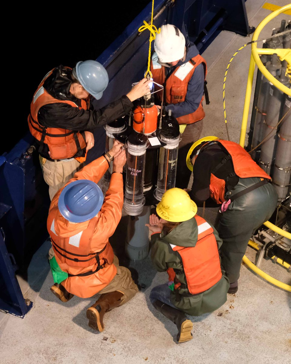 Researchers bring an NBST onto the deck of the R/V <em>Roger Revelle</em>.