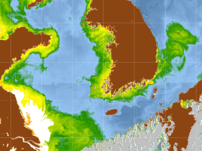 Chlorophyll distributions from the Geostationary Ocean Color Imager (May 13, 2011). Greens and yellows indicate higher chlorophyll concenttations. Land areas are shown in brown and clouds are depicted as gray.