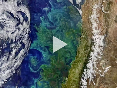 This montage of ocean color and other coastal observations was created by NASA for World Oceans Month 2018.