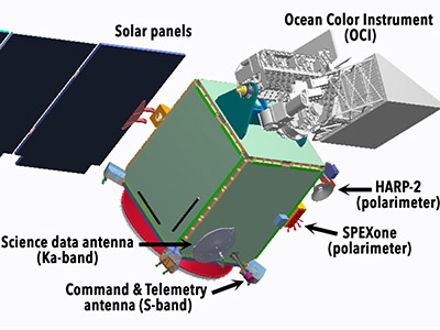 An annotated diagram of the PACE spacecraft and instruments, including the two polarimeters, HARP-2 and SPEXone. The primary instrument, the Ocean Color Instrument (OCI) is located at top right and is depicted in silver. Credit: NASA/GSFC