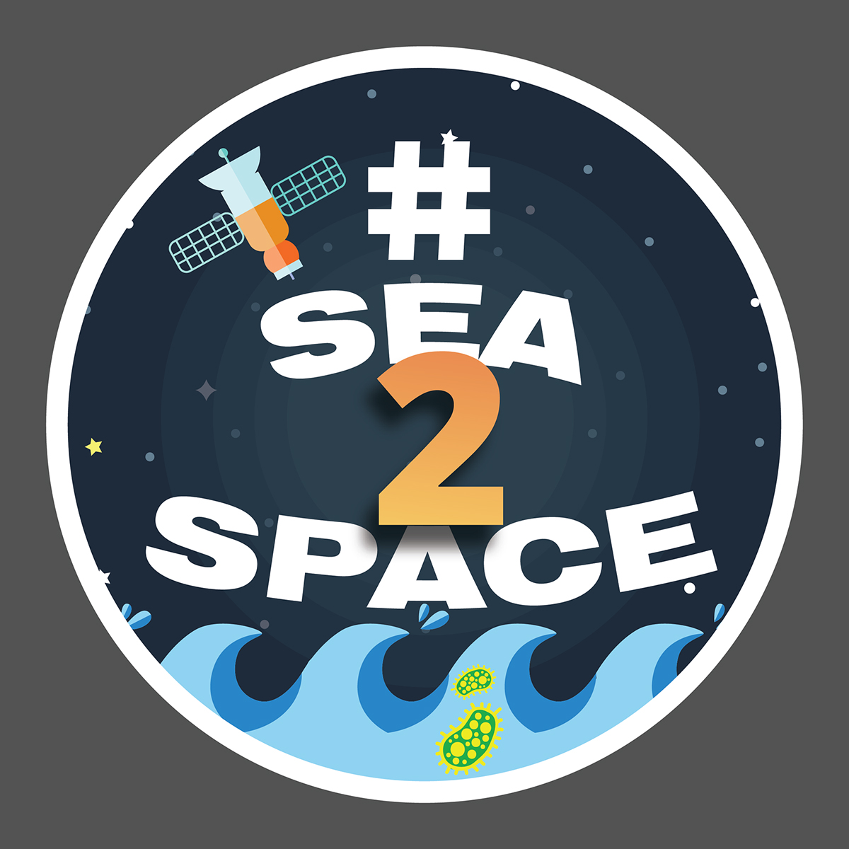 Logo for the Sea to Space Particle Investigation cruise.