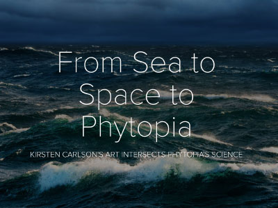 "Kirsten Carlson, a scientific illustrator, was the Schmidt Ocean Institute's Artist-at-Sea during the ""Sea to Space Particle Investigation. Her illustrations depict Pacific Ocean plankton between Honolulu and Portland."