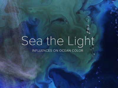PACE will help better identify phytoplankton communities from space. Its novel technology will keep a sharp eye on the health of our ocean. This e-brochure explains the ways PACE can differentiate between groups of plankton, based on the way they absorb, scatter or reflect light. Credit: NASA PACE