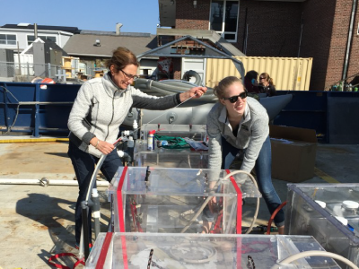 Loading the R/V Atlantis with Plankton Incubators