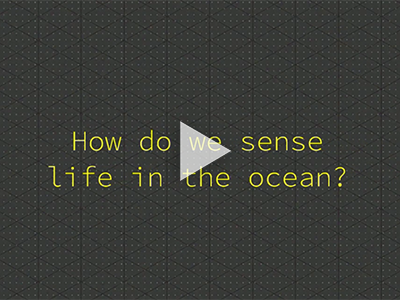 How Do We Sense Life in the Ocean?