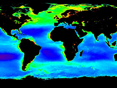 Average Spring Ocean Chlorophyll Concentrations from 1998-2004