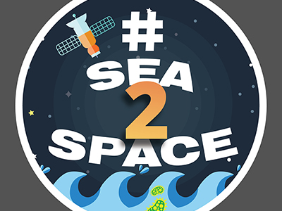 Sea To Space Cruise Logo