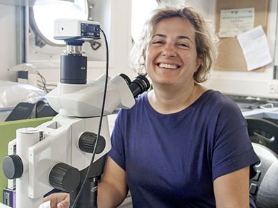 Zrinka Ljubesic, a taxonomy expert, works hand in hand with the experts on board the R/V <em>Falkor</em> to identify the different phytoplankton organisms present in each water sample. Credit: Schmidt Ocean Institute / Monika Naranjo Gonzalez